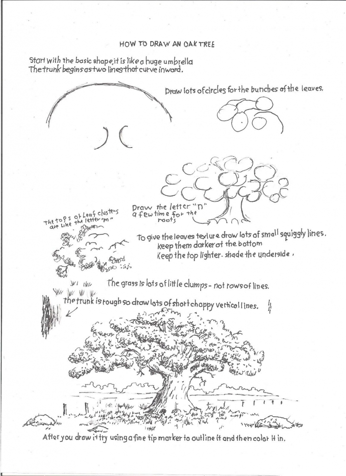 How To Draw Worksheets For The Young Artist How To Draw An Oak