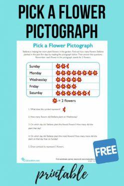 Pick A Flower Pictograph