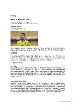 Reading Comprehension: The Soccer Sprain