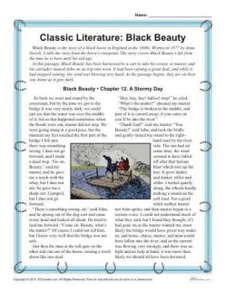 Reading Comprehension: Black Beauty