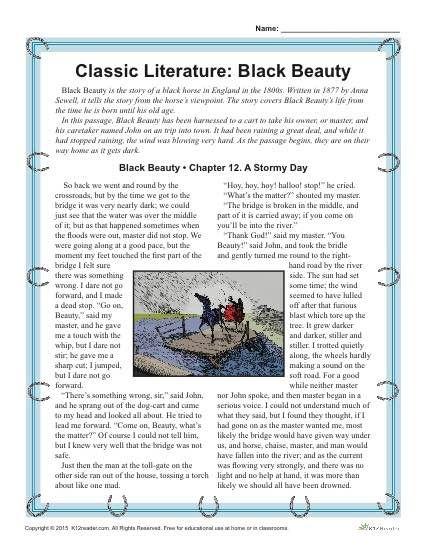Reading Comprehension Worksheet Set For Black Beauty