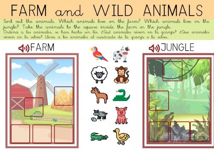 Sort Out Animals Worksheet