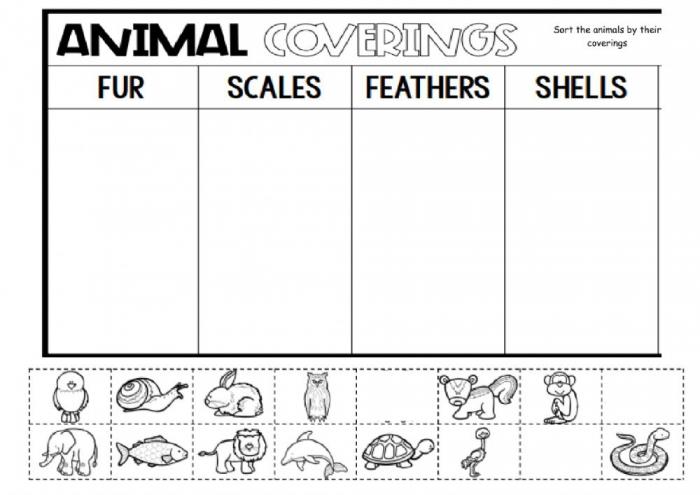 Animal Body Coverings Interactive Worksheet