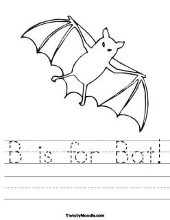 Interesting Animals: Bats