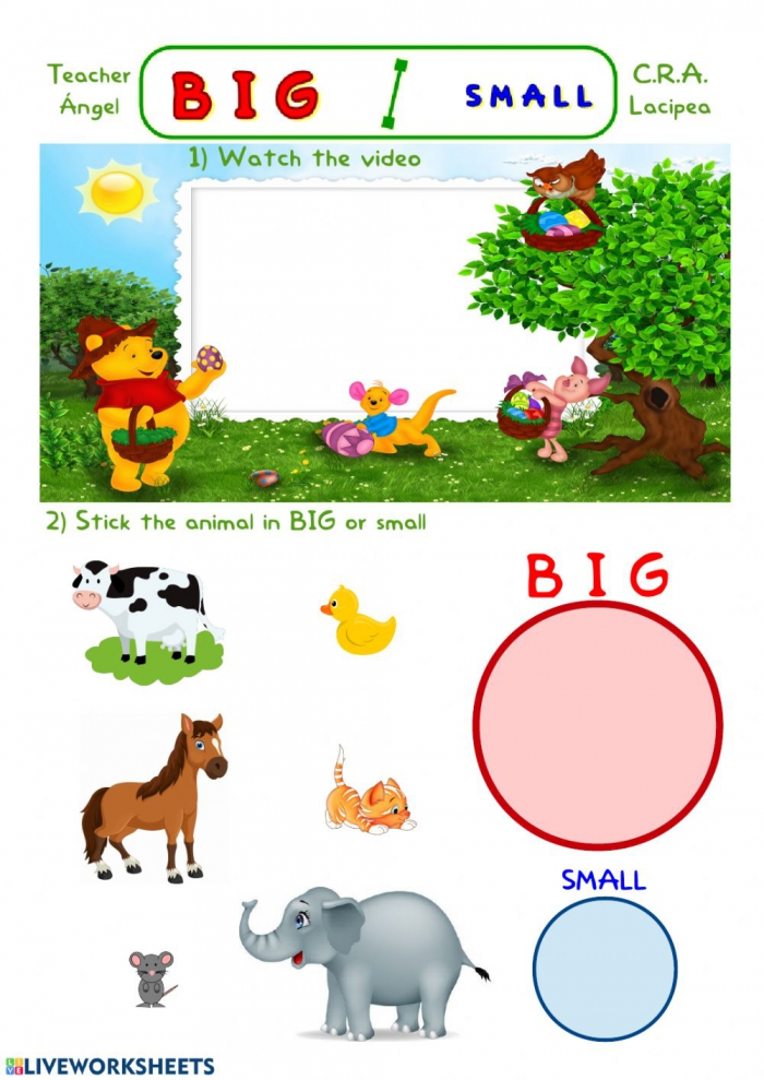 Big And Small Activity For