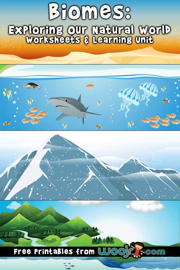 Biomes Worksheets   Learning Unit