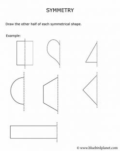 Shapes With Symmetry