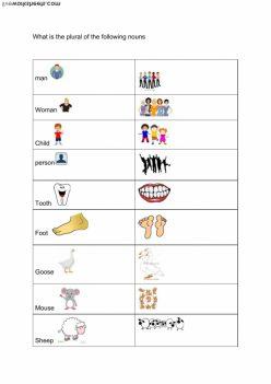 Irregular Plurals: Plural Practice 1