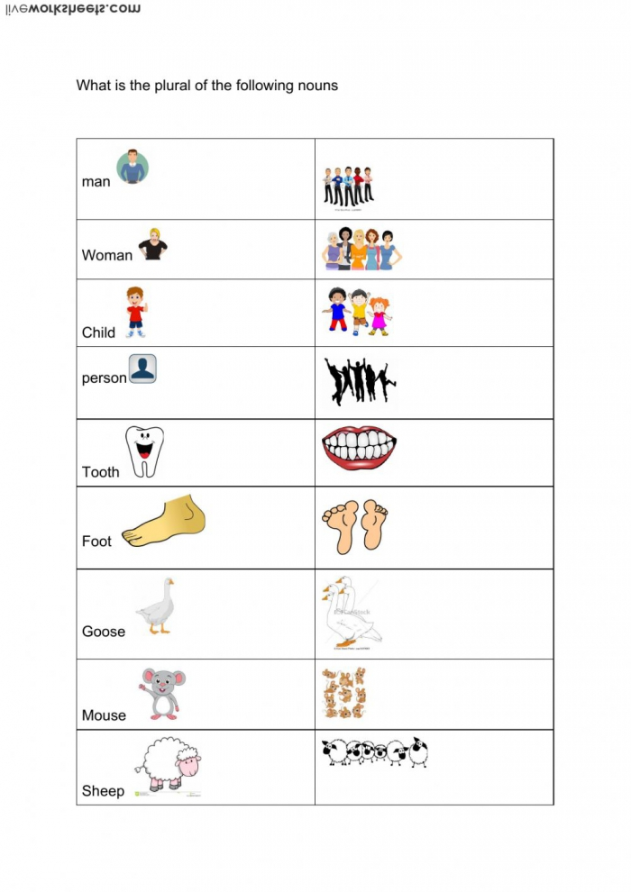 Irregular Plural Nouns Worksheet