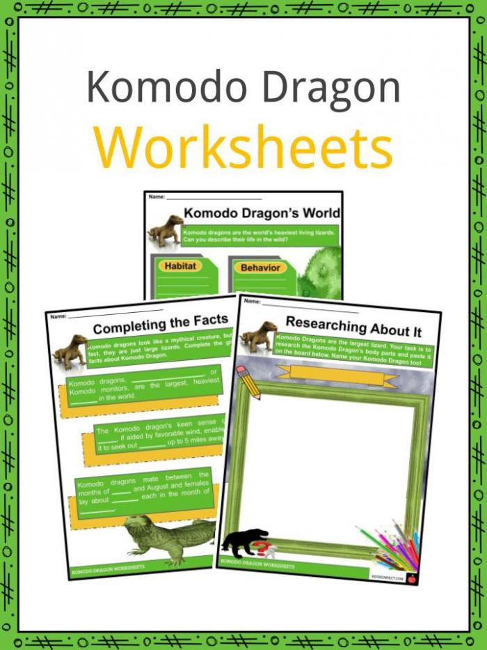 Komodo Dragon Facts  Worksheets  Habitat  Behavior   Diet For Kids