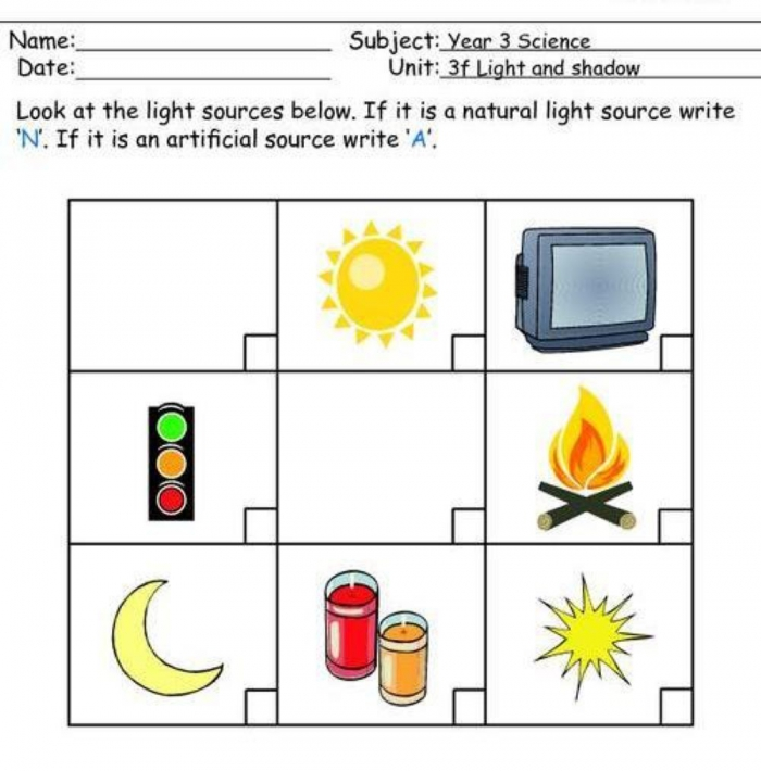 Light   Shadow Worksheet