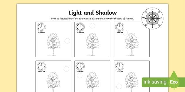 Light And Shadow Worksheet Teacher Made