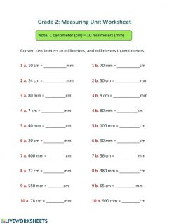 Measurement Mania: Time To Review