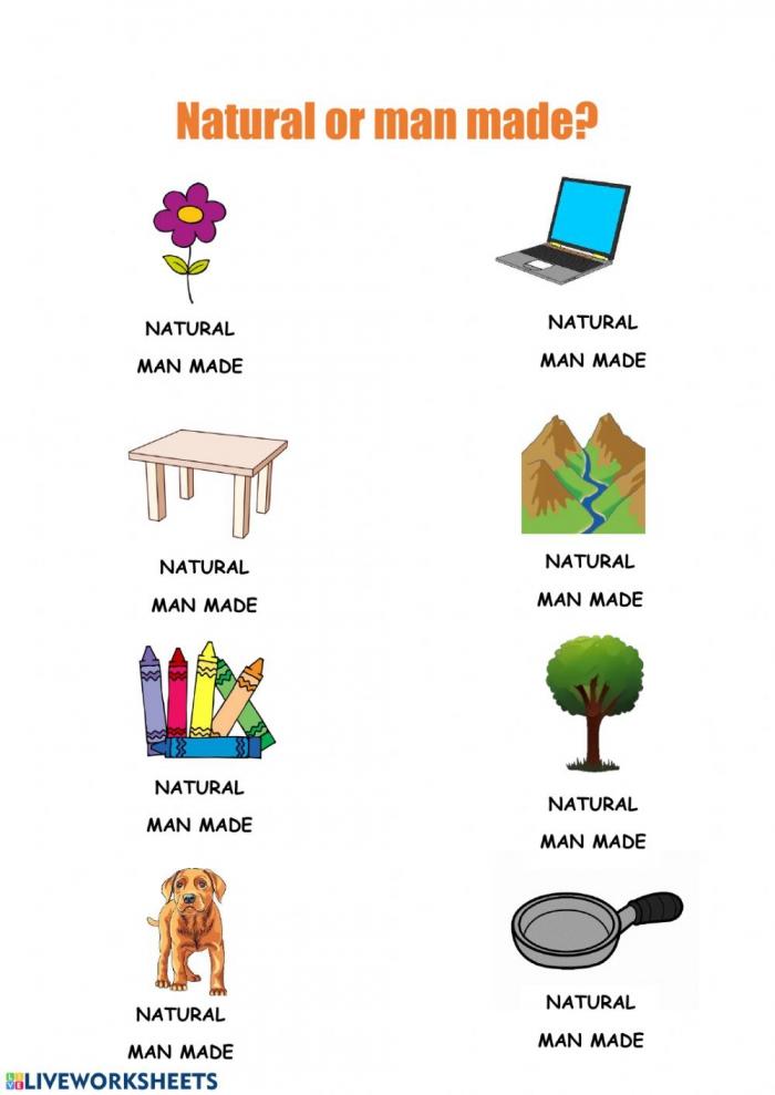 Natural Or Man Made Worksheet