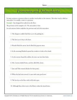 Pronoun Agreement 2