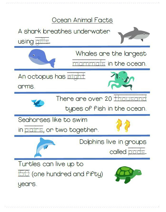 Simple Tracing Worksheet With Ocean Animal Pictures And Fun Facts