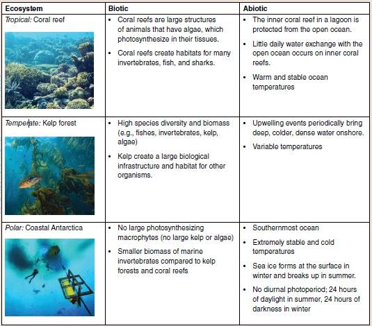 Exploring The Complexity Of Ocean Acidification An Ecosystem