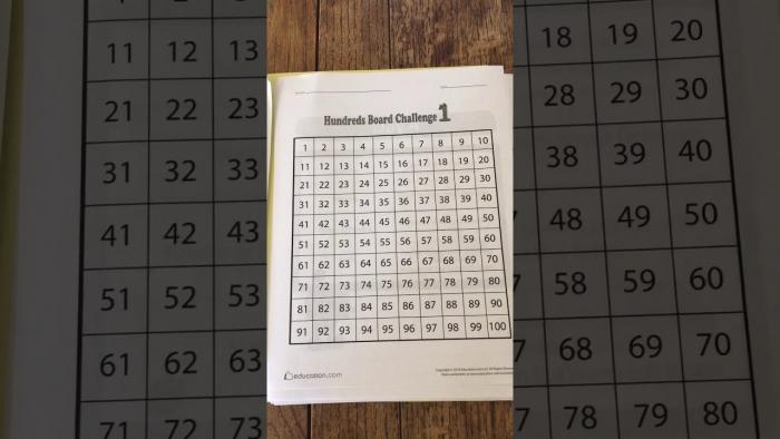 Hundred Board Challenge