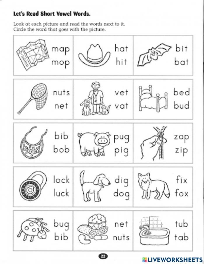 Read Short Vowel Words Worksheet