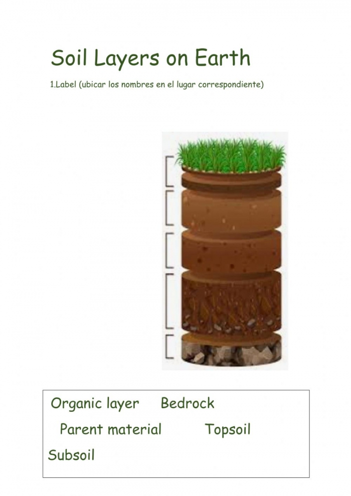 Soil Layers On Earth Worksheet
