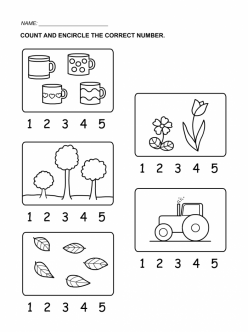 Tracing Numbers And Counting: 5